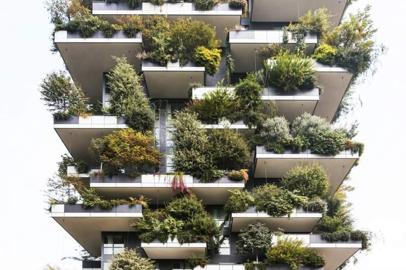 La sostenibilita' del bosco verticale